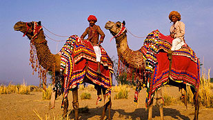 BEST OF RAJASTHAN with TAJ TOUR